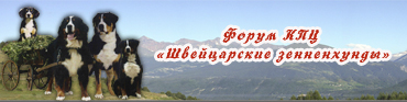 "Форум КПЦ ""Швейцарские зенненхунды и Ко"""